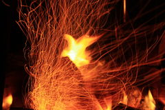 Flaming phoenix. Evening, bonfire, by the lake, comfort, fiery phoenix, bird, game with fire stock photos