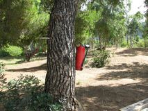 Fire extinguisher. Mounted on a tree in Greece stock photography