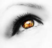 Fire eye. Closeup of deep look fire eye Stock Images