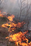Fire on the field. An image of fire is in the field Stock Photos