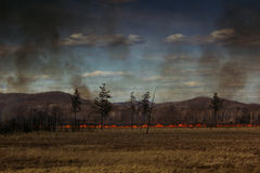 The fire in the field. Fire line. Disaster. Royalty Free Stock Photo