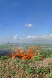 Fire in field after harvest Stock Image