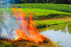Fire in the field Stock Photos