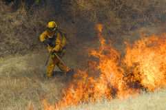 Fire fighter and flames. In a dry grassy field Royalty Free Stock Image