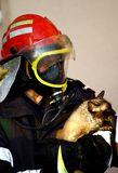 Fire fighter saving cat. Bucharest, Romania - October 2, 2012: A fire fighter holds a cat, after saving it from a burning block of flats in Bucharest Royalty Free Stock Photos