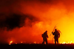 Fire fighters. Team of two firemen fighting a fire in a field Royalty Free Stock Photography