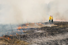 Fire fighters on charred or burned terrain Royalty Free Stock Photos