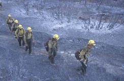 Fire fighters crossing charred terrain Royalty Free Stock Photography