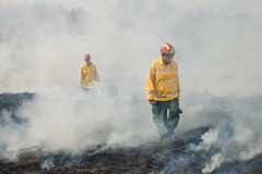 Fire fighters crossing charred terrain Royalty Free Stock Image