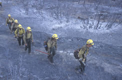 Fire fighters crossing charred terrain, Los Angeles Padres National Forest, California Stock Photos