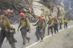 Fire fighting crew carrying equipment Royalty Free Stock Image