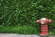 Fire fighting water supply hose Red stock photos
