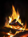 Fire in the fireplace Stock Image