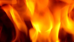 Fire in fireplace. stock video footage
