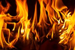 Fire in a fireplace with flames royalty free stock photo
