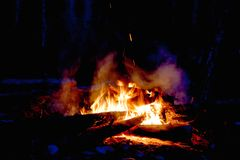 Fire and firewood Stock Photography