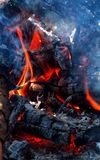Fire and firewood. Burning fire wood and ember closeup stock images