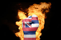 Fire fist with the flag of hawaii Stock Photography