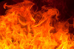 Fire flame Stock Photography
