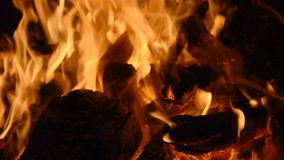 Fire Flame background. Hd stock footage stock video footage