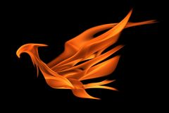 Fire flame in bird shape. A picture of a fire flame illustrated into a bird shape Royalty Free Stock Photography
