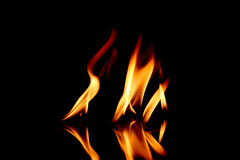 Fire flame Stock Images