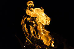 Fire flame on black background Stock Images