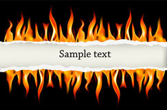 Fire flame on a black background. Vector. Illustration Royalty Free Stock Photo