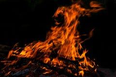 Fire flame bonfire spurts Stock Image