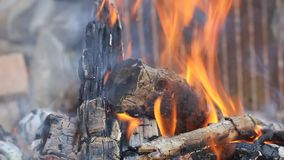 Fire flame. Burning Logs stock footage