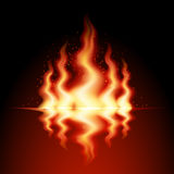 Fire Flame. Burning fire flame with reflection on black background Stock Photos