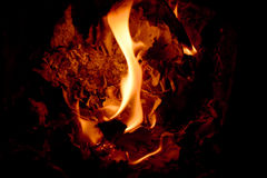 Fire. The flame, burns, a fire, hot, the fire stock photos
