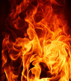 Fire flame close up on black background Royalty Free Stock Photo
