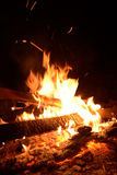 Fire flame close up. Burning wood in a fire close-up Stock Photography