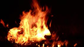 Fire flame close up stock video footage