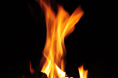 Fire flame. Close-up one element on black background Stock Photos
