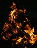 Fire, Flame, Fire Bowl, Wood Fire Royalty Free Stock Photos