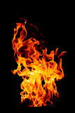 Fire flame isolated on black isolated background - Beautiful yel Royalty Free Stock Photography
