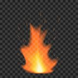 Fire flame on transparent background. Vector illustration Royalty Free Stock Photo