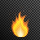 Fire flame on transparent background. Vector illustration Royalty Free Stock Images