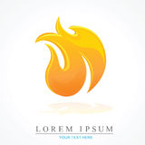 Fire flame vector icon. Vector design of flame design Stock Images