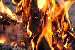Fire and flames. In campfire - closeup Royalty Free Stock Images