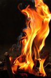Fire flames. Burning fire flames with dark background Royalty Free Stock Photography