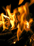 Fire flames. Raising in a dark background Stock Image