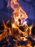 Fire and flames. A nice fire in a fire place Royalty Free Stock Photos
