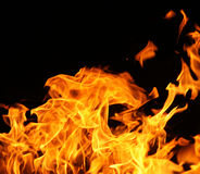 Fire flames. On a black background stock photos