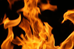 Fire flames. On a black background royalty free stock image