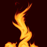 Fire and flames. On black background. vector illustration Stock Photography