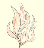Fire flames or abstract plant Stock Photos