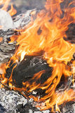 Fire flames around black tree log Royalty Free Stock Photography